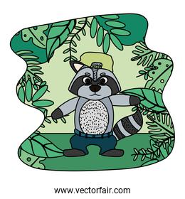 color raccoon animal with hat and pant in the landscape