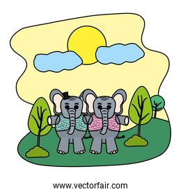 color couple elephant with hat and vest in the landscape