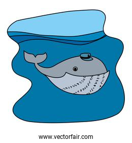 color whale animal with hat in the ocean landscape