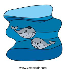 color couple whale with hat in the ocean landscape