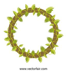 circle tropical leaves style plants