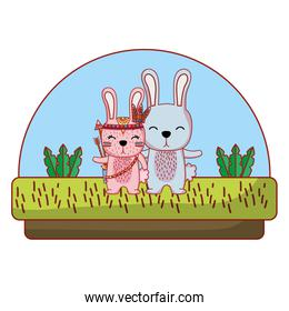 couple rabbit animal together in the countryside