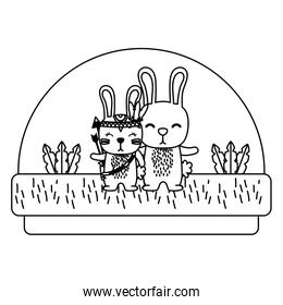 line couple rabbit animal together in the countryside