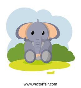 cute elephant wild animal in the landscape