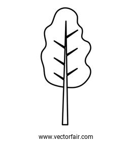 line nature tree stalk with leaves branches