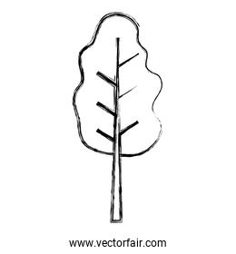 grunge nature tree stalk with leaves branches