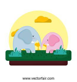 adorable elephant couple animal in the landscape