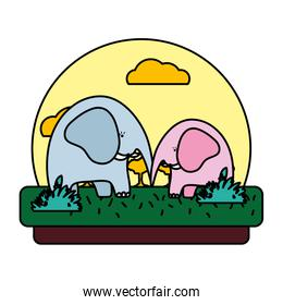 color adorable elephant couple animal in the landscape