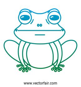 degraded line cute exotic frog wild animal
