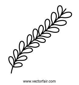 line natural branch with tropical leaves plant