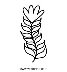 line natural branch leaves with exotic flower