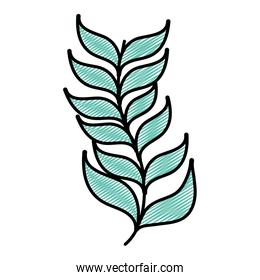 doodle exotic branch leaves natural plant