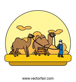 color man with dromedary and camel in the desert landscape