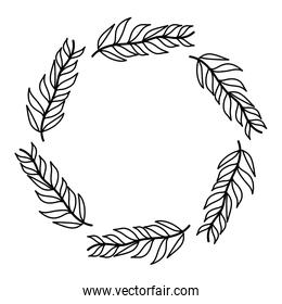 line circle tropical branches leaves plant