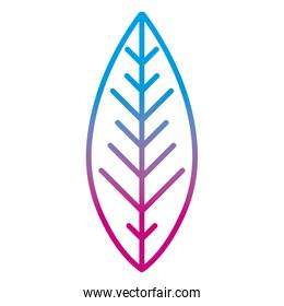 degraded line cute exotic leaf tropical style