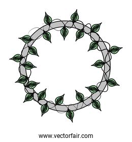 color circle plant branches with tropical leaves