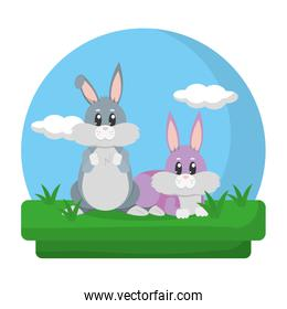 cute rabbits friends animals in the landscape