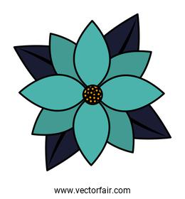 color nice exotic flower with petals style