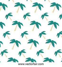 tropical palm tree leaves background