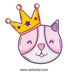 happy cat pet animal with crown