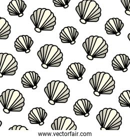 color nice shell nature style background
