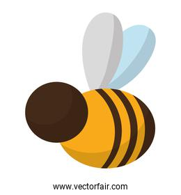 cute bee insict animal flying