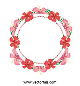 circle plant branches flowers decoration