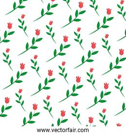 tropical flower plant with petals background