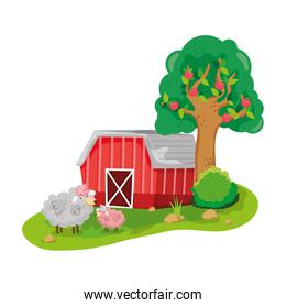 house farm with sheeps animals and tree
