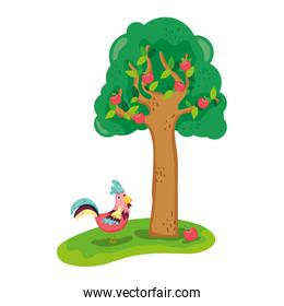 apple tree and rooster farm animal