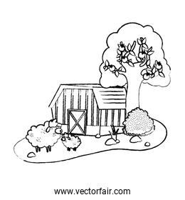 grunge house farm with sheeps animals and tree