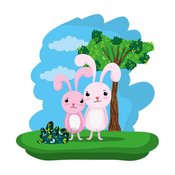 couple rabbit cute animal in the forest