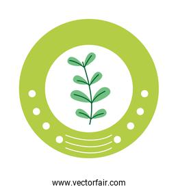 ecology emblem sticker with plant icon