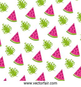 watermelon fruit and exotic plant background