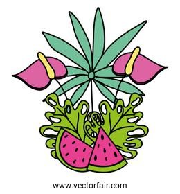color flowers with branches plants and watermelon fruit