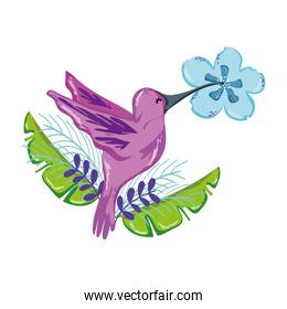 tropical bird flying with exotic flower