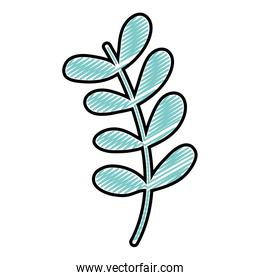 doodle tropical branch exotic plant leaves