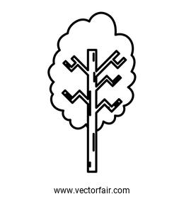 line ecolology tree branch with stalk style