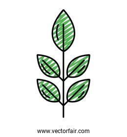 doodle exotic nice plant leaves style