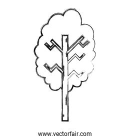 grunge ecolology tree branch with stalk style