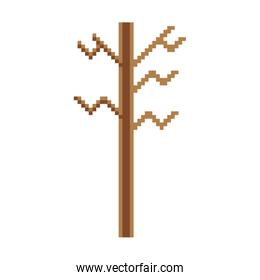 pixelated exotic wood nature stalk branch
