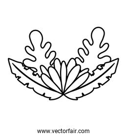 line cute flower with exotic plants leaves