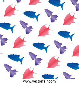 tropical fishes nature animals background