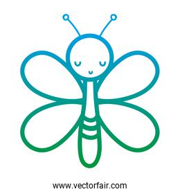 degraded line cute butterfly insect animal with wings
