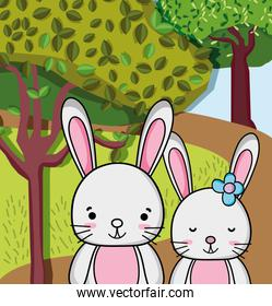 Cute rabbits cartoons