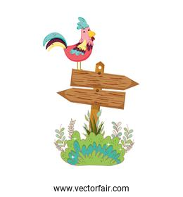 garden with wooden arrow signal and rooster