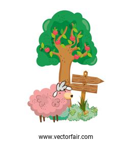 garden with wooden arrow signal and sheep