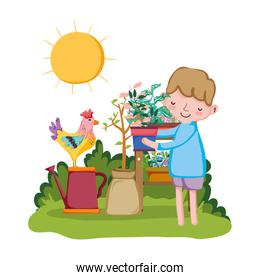 little boy lifting houseplant with shelf and rooster