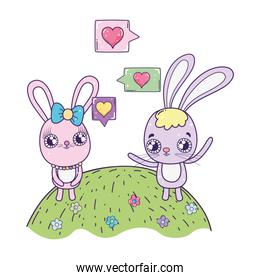 cute rabbits couple valentines day