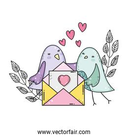 cute little birds couple with envelope lovely characters